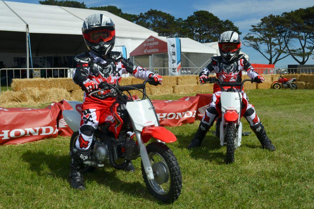 Honda Fun Bikes